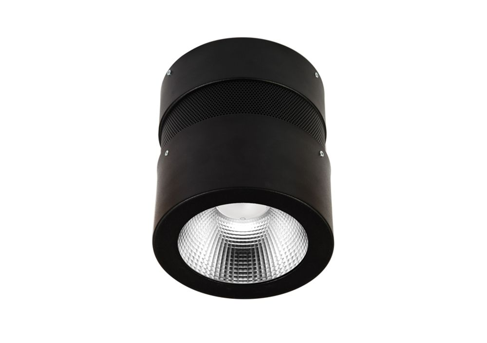 Hayley Led Surface Suspended